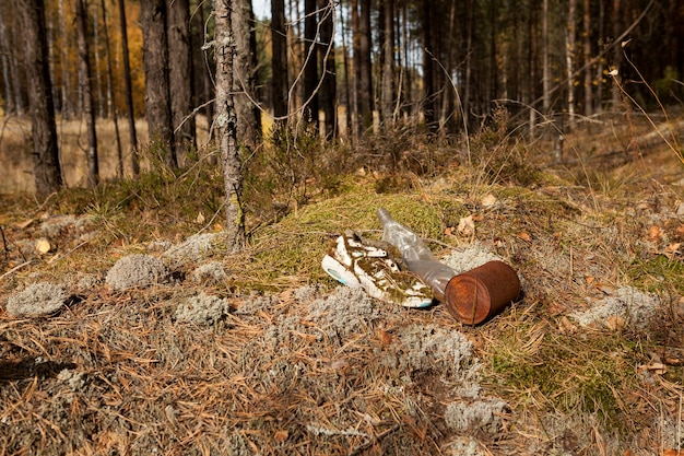 Funny old shoes, plastic and metal household garbage on edge of forest