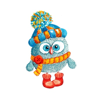 Funny owl in a knitted hat with a pompom and scarf on white