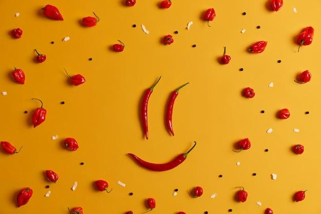 面白い人は、黄色のスタジオの背景に分離された、レッドホットチリペッパーで作られた笑顔に直面しています。健康的な食事の概念。フードアートとクリエイティブなコンセプト。新鮮な生野菜の幸せな笑顔