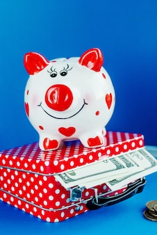 Funny piggy bank on red suitcase with money
