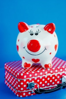 Funny piggy bank on red suitcase