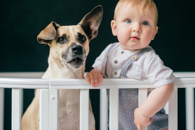 Funny portrait of little baby boy posing  with puppy in bed.