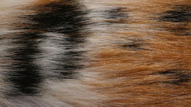 Фон текстуры меха