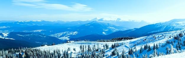 모피 나무 크라운 위에 푸른 하늘이 겨울 날에 겨울 숲에 눈으로 덮여 있습니다. 겨울 원더 랜드 자연 개념의 풍경