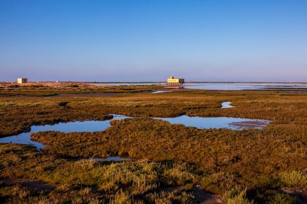 Fuseta marshlands low tide