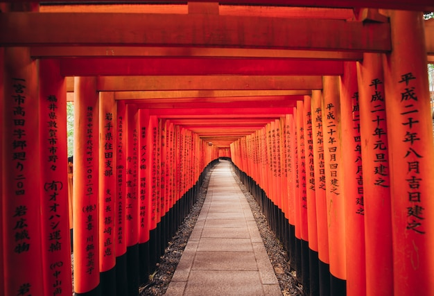 The fushimi-inari path in kyoto