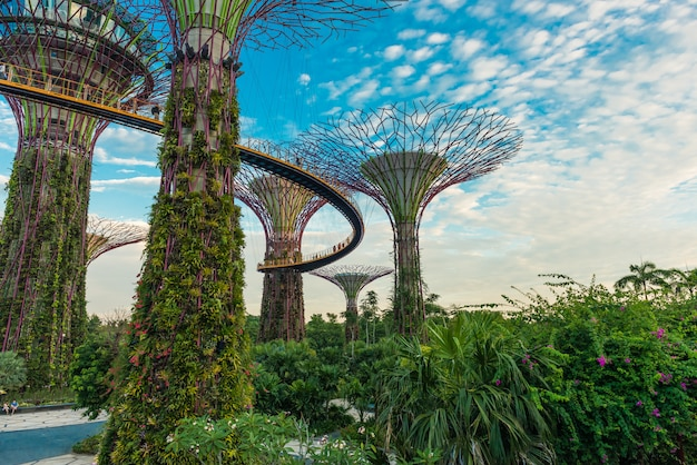 Футуристический вид на удивительное освещение в саду у залива