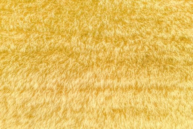 밀의 퍼지 귀, 바로 위의 건초 밭 공중 촬영