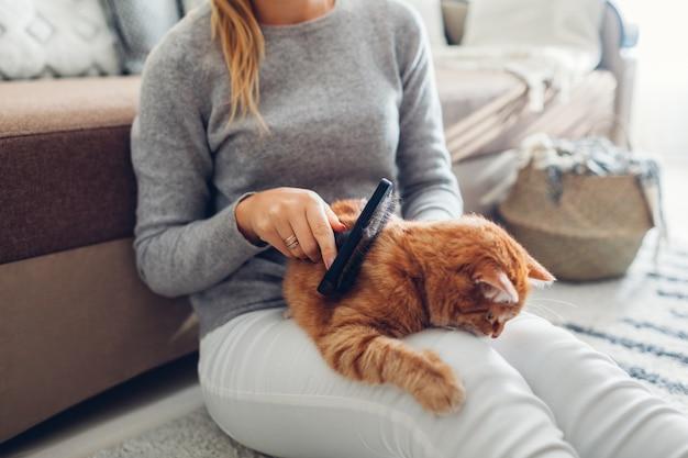 生g猫を自宅で櫛のブラシでとかします。髪を削除するペットの世話をする女性の所有者。