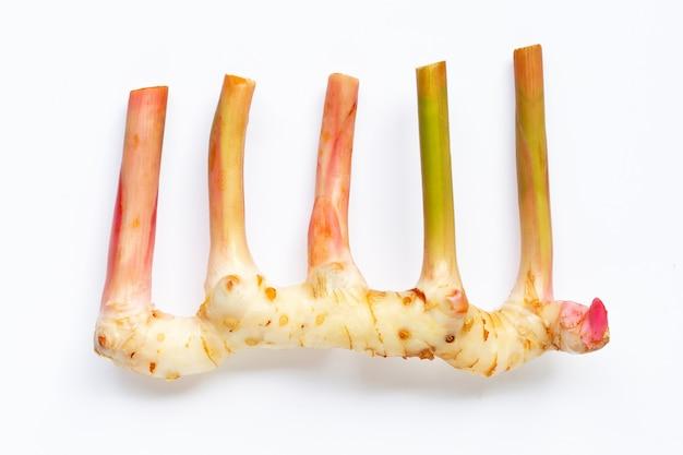 Свежий galangal изолированный на белизне.