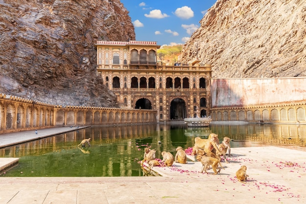 Galta ji temple or monkey temple complex in jaipur, india.