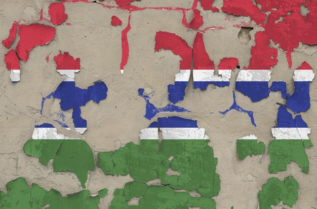 Gambia flag depicted in paint colors on old obsolete messy concrete wall closeup. textured banner on rough background