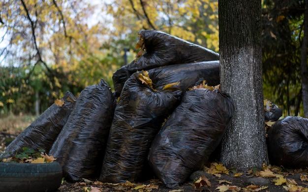 Мусорные мешки лежат на улице