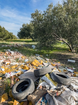 Garbage and used materials dumped into the forest, contaminating a clean area.