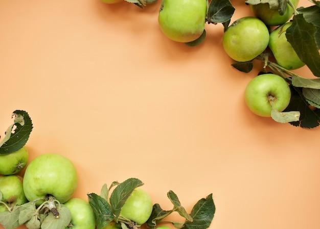 テーブルの上の庭のリンゴ、自然な背景に新鮮なリンゴの果実の束、秋の収穫の概念