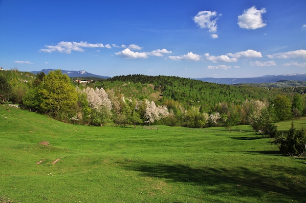 The garden in bosnia and herzegovina