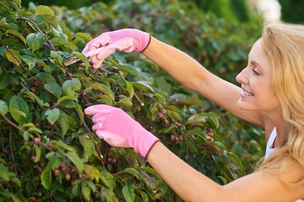 ガーデンケア。夏の日に木の枝を剪定する保護手袋を着用して笑顔に触発された中年女性