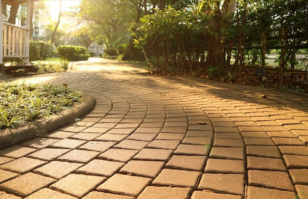 Garden curving stone block pathway in the gentle sunlight