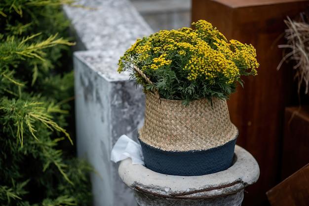 庭の装飾。わら籐のかごの中では、黄色いタンジーの花が咲きます。ファッショナブルでスタイリッシュなガーデニング。コピースペース