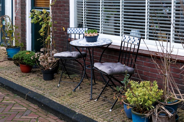 Garden furniture on porch of house with outdoor plants. home outdoor plants. landscaping gardening in city. geocyint in a pot on coffee table. place to rest in autumn or winter in netherlands.