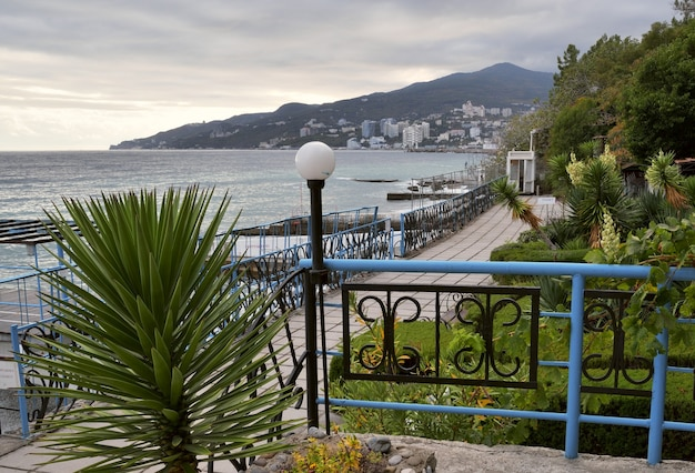 Сад на черном море недалеко от ялты декоративный сад с субтропической растительностью осенью