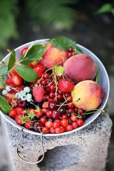 체에 정원 유기농 딸기와 과일