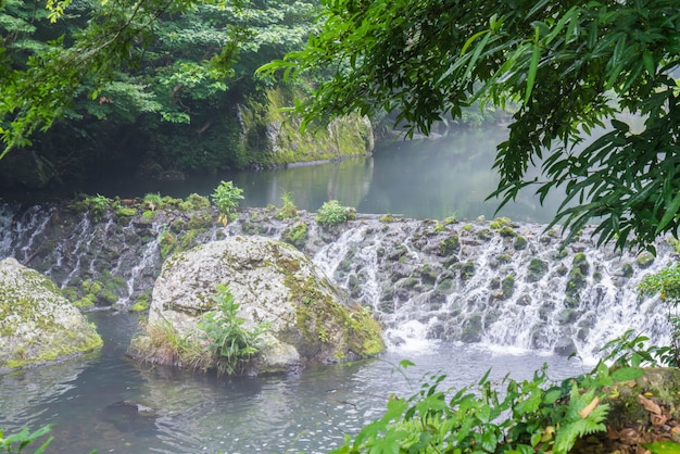 Garden park at cheonjiyeon waterfalls in jeju island