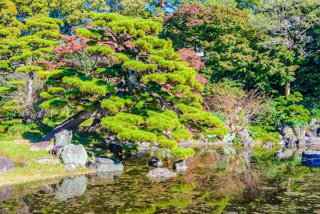 Garden in the park at imperial palace