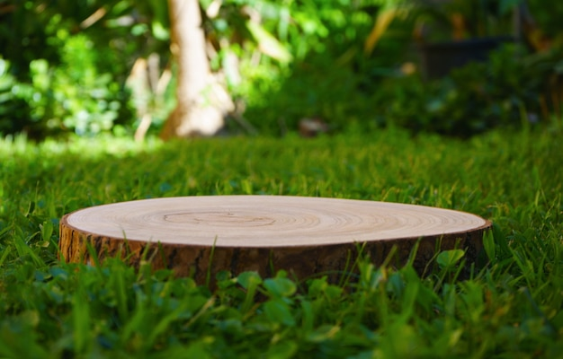 庭の表彰台の木の幹の緑の背景