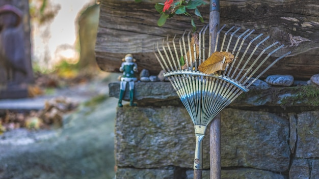 Garden rake brooms with dried leaf