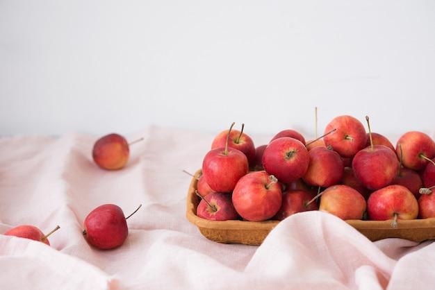 정원, 잘 익은 자연, 에코 그릇에 있는 미니 사과, 선택적인 초점, 복사 공간