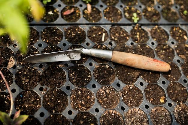 Garden throwel with seedlings in greenhouse