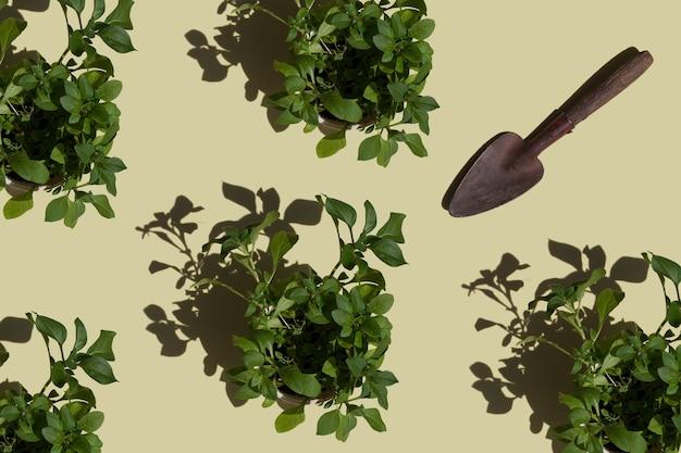 Garden tools shovel for gardening flower transplanting