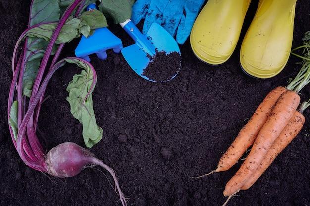 Садовые инструменты с овощами на почве