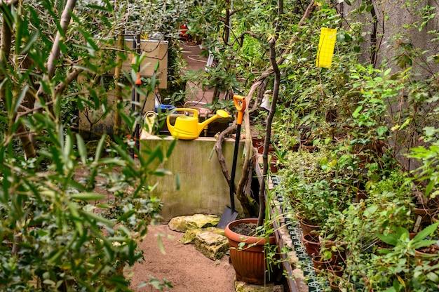 정원 도구. 노란색 정원 물을 수 있습니다. 아름다운 식물원. 아름다운 녹색 식물. 주변의 녹지.