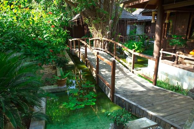 코코넛 야자수가있는 정원