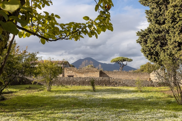 A garden with a green lawn of one of the villas destroyed by the eruption of vesuvius in pompeii