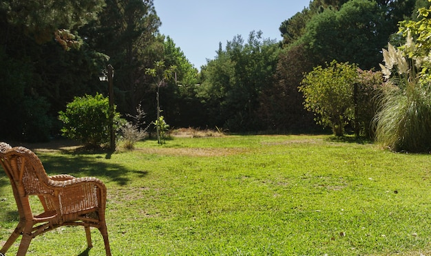 Garden with a lot of grass and vegetation and a ratan chair in the foreground