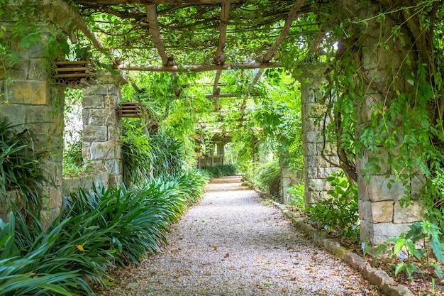 늦은 여름 시즌에 밝은 색상의 pergola 구조의 정원. 이 건축물과 디자인은 자연에서 영감을 받았습니다.