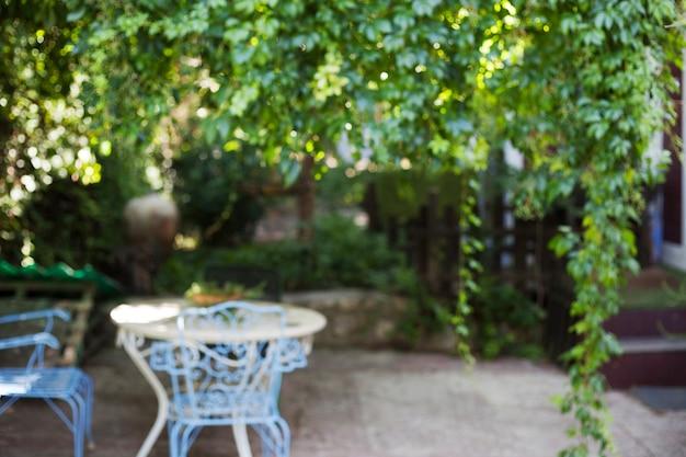 Сад с фоном стола