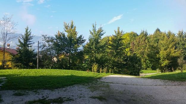 일몰 시간 동안 가을에 돌로미티에 나무가 있는 정원