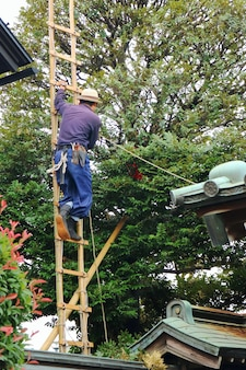 Garden worker is climbing and working on the tree with bamboo staircase and safety tool.