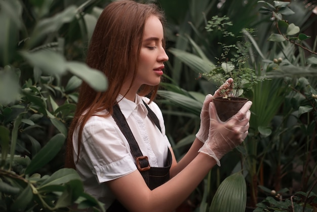 Garden worker look at seedling growth