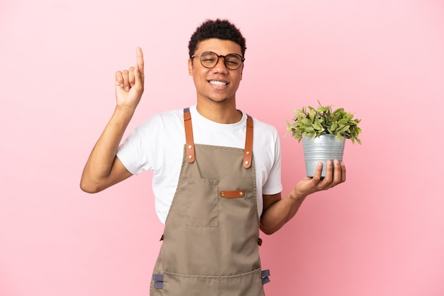 Африканский мужчина-садовник, держащий растение на розовом фоне, указывая вверх на отличную идею