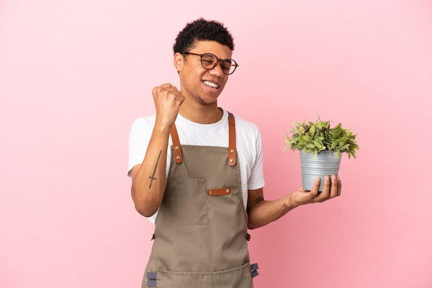 Gardener african man holding a plant isolated on pink background celebrating a victory