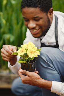 Giardiniere in un grembiule. ragazzo africano in una serra. fiori in una pentola.