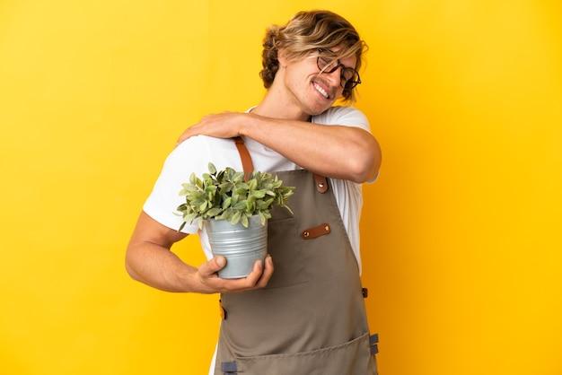 努力したために肩の痛みに苦しんで黄色に隔離された植物を保持している庭師の金髪の男