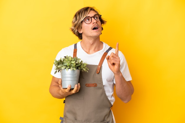 Gardener blonde man holding a plant isolated on yellow wall thinking an idea pointing the finger up