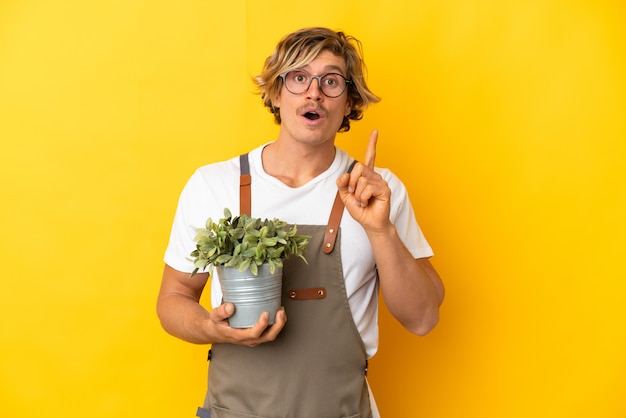 Gardener blonde man holding a plant isolated