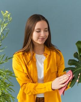 庭師が植物の葉を掃除する
